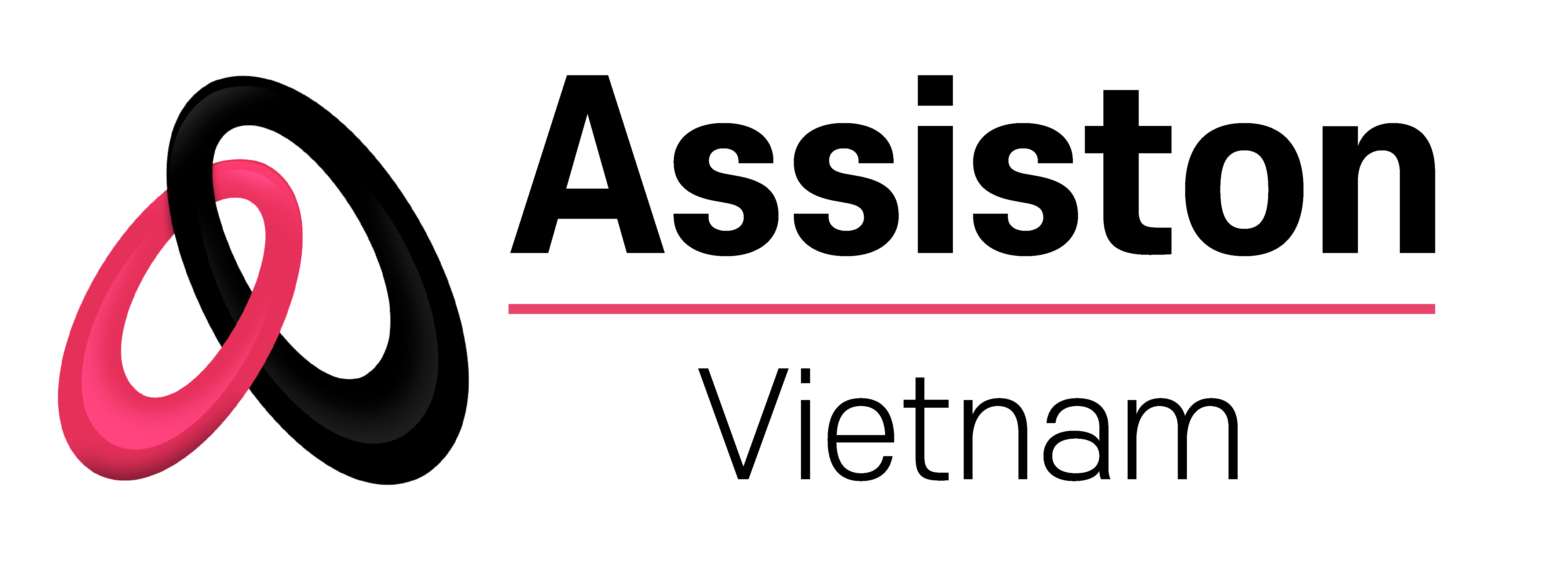 Assiston Global – Vietnam